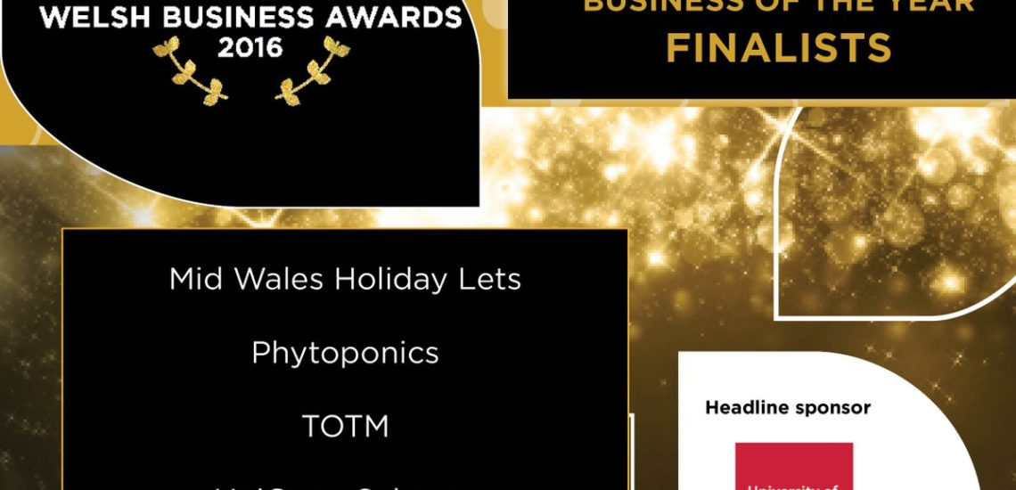 Apartments in Mid Wales, Welsh Business of the Year 2016
