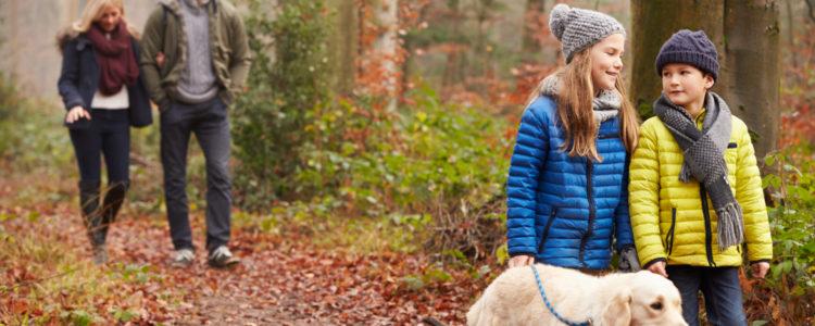 Pet Friendly Holidays at Glandwr House and Old Drapers Mid Wales Holiday Lets Rhayader, Elan Valley